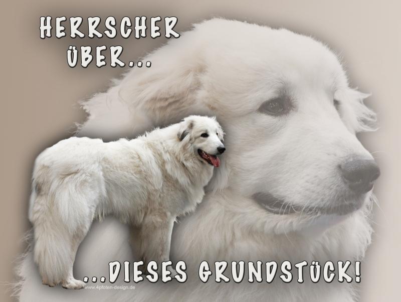 Schiefertafel « PYRENÄENBERGHUND SCHÖNSTER HUND » Spruch Hunde Dekoration Deko