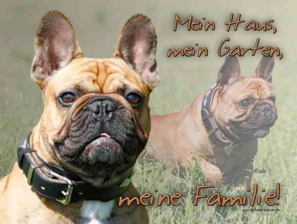 4pfotenshop Hundewarnschilder Und Kratzfeste Autoaufkleber Mit Hundemotiven Hundeschilder Metallschilder Turschilder Franzosische Bulldogge
